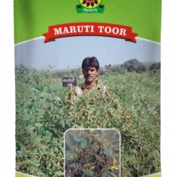 Shree Maruti Tur Seeds - ICP 8863