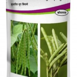 Shree Moong - Green Gram Seeds