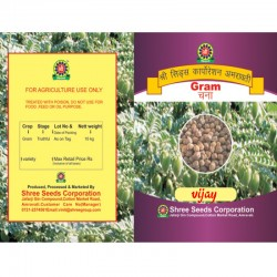Chana Seeds VIJAY Bengal Gram