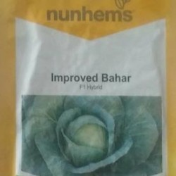 Cabbage Improved Bahar F1