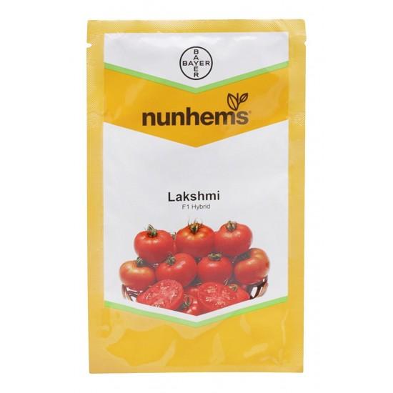 Tomato Lakshmi F1