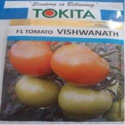 Tomato Vishwanath