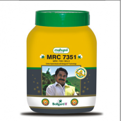 Cotton Seed Mahyco MRC 7351 BG-2