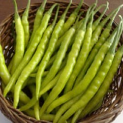 Ankur Hybrid  Chilly ARCH – 930  (10 g ) - Vegetable Seeds