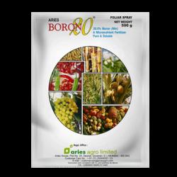Aries Boron-20