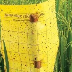 Barrix Magic Sticker Chromatic Trap - Yellow Sheet (5 Sheets)