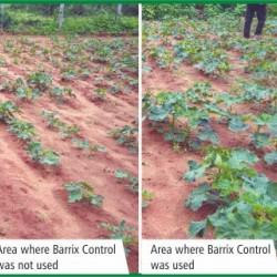 Barrix Control