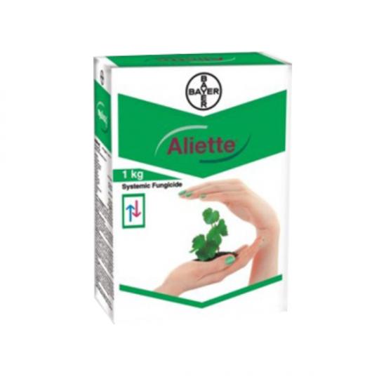 Bayer Aliette