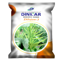 Dinkar GUAR Vegetable Seeds Dilojan-3 -250 GRM