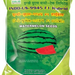 Indo US 9945 F1 Hy Watermelon Seeds