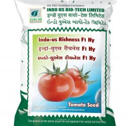 INDO-US RICHNESH F1 HY TOMATO