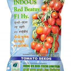 INDO-US-RED BEAUTY F1 HY TOMATO