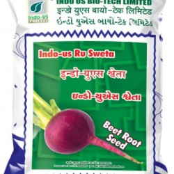 Indo US Sweta Beet Root Seeds