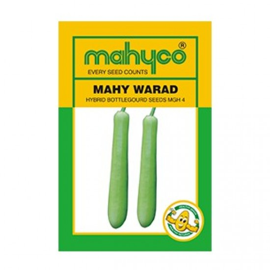 Mahyco BOTTLEGOURD MGH 4-WARAD  Vegetable Seeds