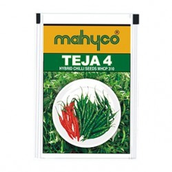 Mahyco chilly MHCP 310 – TEJA (10g) Vegetable Seeds