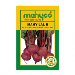 Mahyco MAHY LAL-II  (50g) Beet Root Seeds