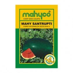 Mahyco MHW 4 (SANTRUPTI) (50g) WaterMelon Seeds