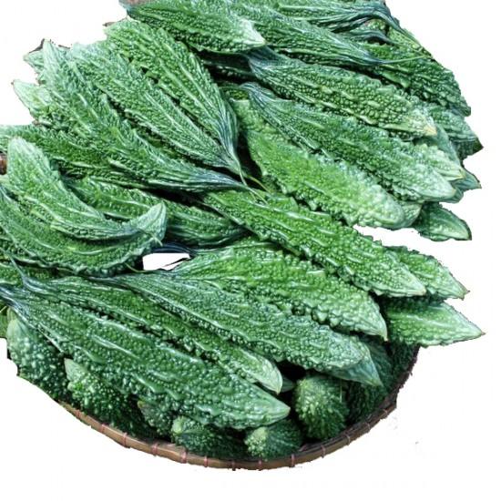 Hybrid Green Long Bitter Gourd  Vegetable Seeds