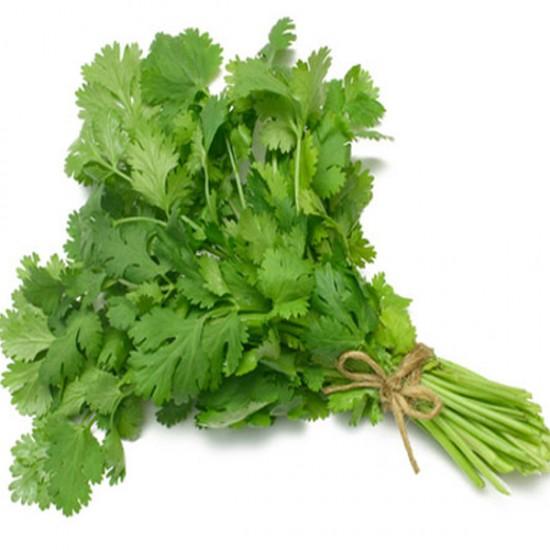 CORIANDER- DHANIA  Vegetable Seeds