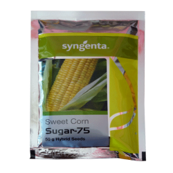 Syngenta Sweet corn