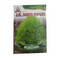 Kochia Flower Seed