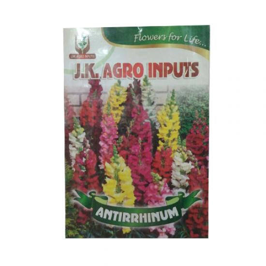 Antirrhinum Flower Seed