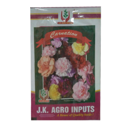 Carnation Flower Seeds