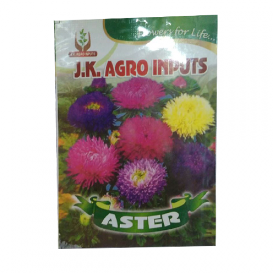 Aster Flower Seed