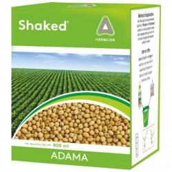 Adama-Shaked