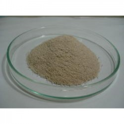 NanoFerrous -Chelate Fe- 12