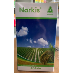 Adama NARKIS