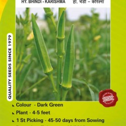 Jindal Seeds Hybrid Bhindi (Okra seeds) Karishma-50GM