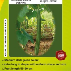 Jindal Ridge gourd Hybrid Seeds(Turee Seeds)-Deepika-50GM
