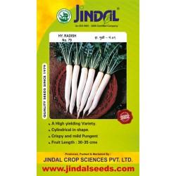 Jindal Radish Hybrid Seeds(Moolee Seeds)-No.79-50GM