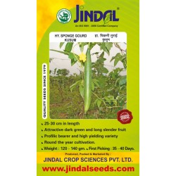 Jindal Sponge gourd  Hybrid Seeds(Spanj Laukee Seeds)-Kussum -50GM