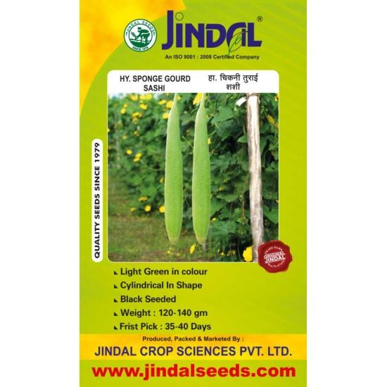 Jindal Sponge gourd  Hybrid Seeds(Spanj Laukee Seeds)-Sashi -50GM