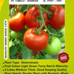 Jindal Tomato Hybrid Seeds, Shankar-10GM