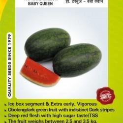 Jindal Watermelon Hybrid Seeds(Tarabooj Seeds) Baby queen-10GM