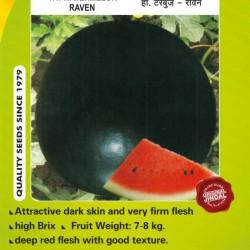 Jindal Watermelon Hybrid Seeds(Tarabooj Seeds) Raven-50GM