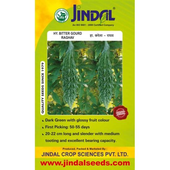 Jindal Bitter Gourd Hybrid  Seeds(karela Seeds)-Raghav-50GM