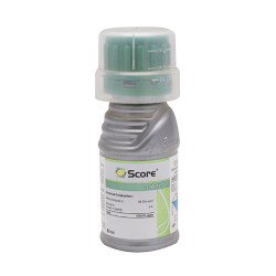 Score Fungicide Syngenta