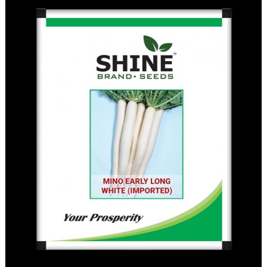 Radish-Mino Early Long White 100 gram