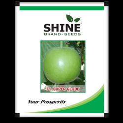 Tinda round melon- F1 super Globe 100 gram