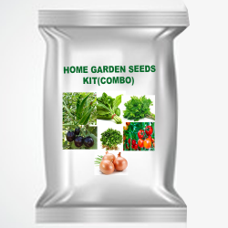 Home garden vegetable seed  kit